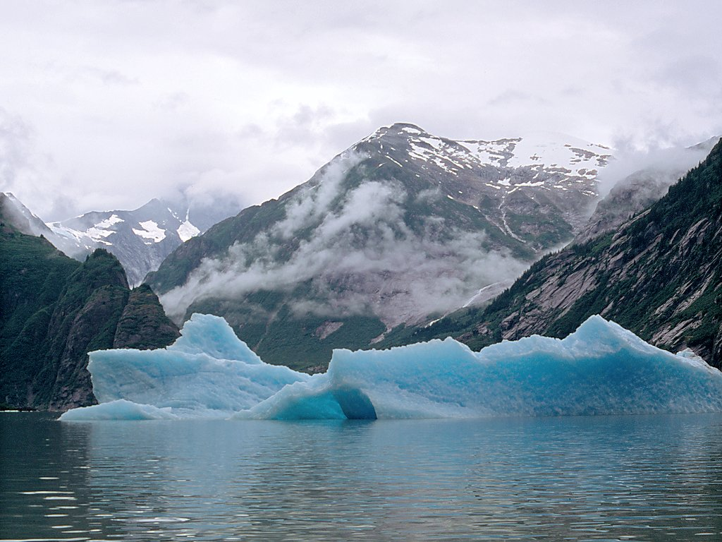 Icebergs float out to sea.  Click for next photo.