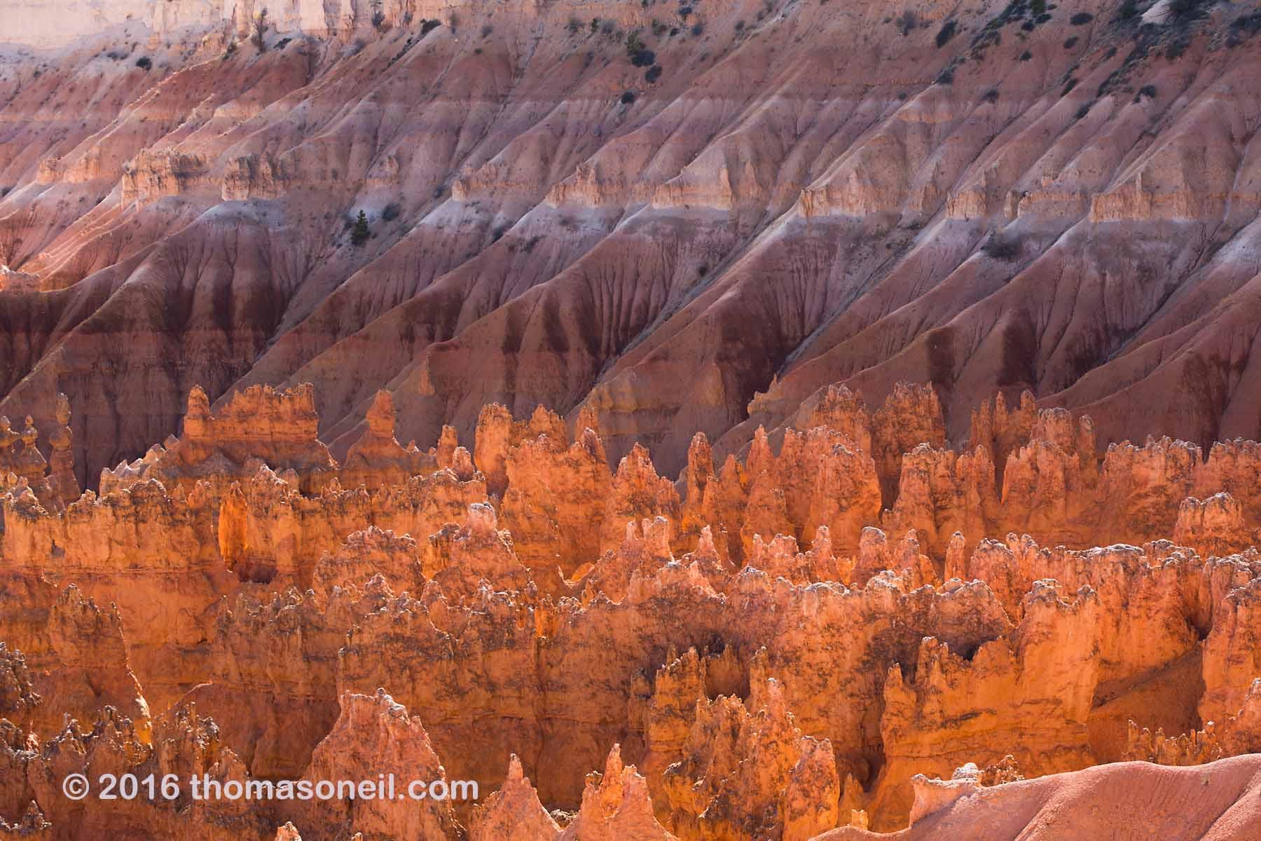Backlit hoodoos outlined against the cliffs of Bryce Canyon.  Click for next photo.